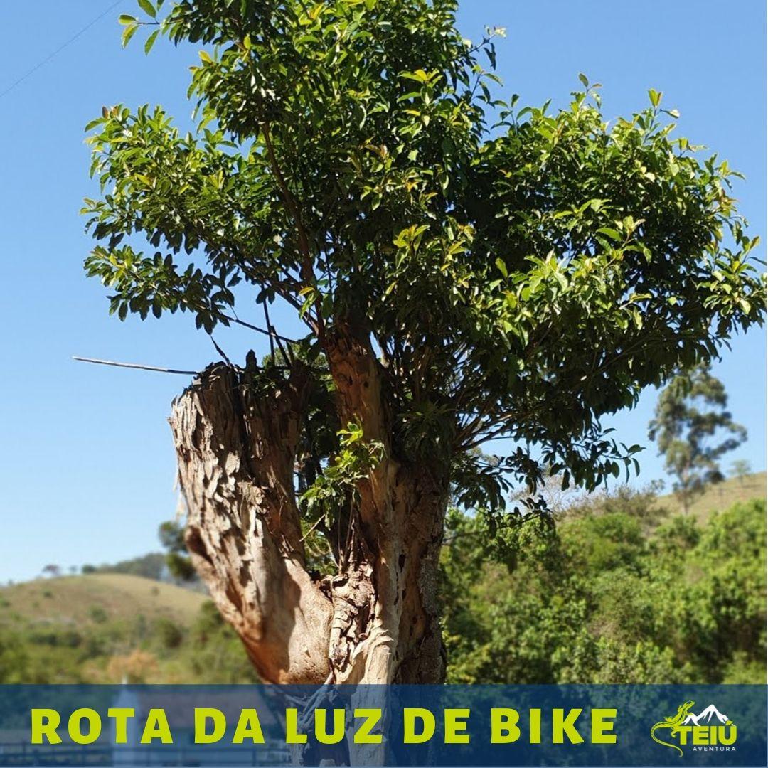 Rota da Luz de bike
